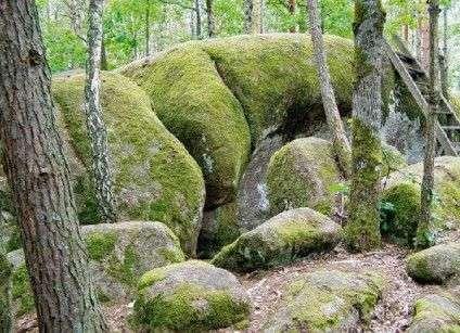 Парк на Черкащині увійшов до 5 неповторних місць України, куди потрібно потрапити в жовтні (фото) - фото 3