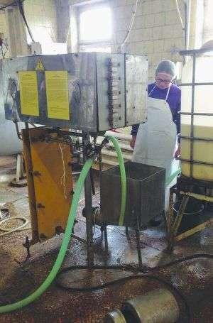 Робітниця зливає молоко на пастеризацію у приватній сироварні в місті Сміла Черкаської області. Процес триватиме півтори години