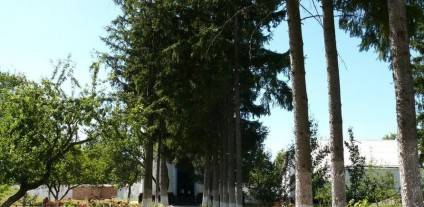 foto-http-invtur-com-ua-tour-shpolyanskij-rajon.12 (2)