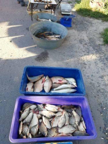 На Черкащині браконьєри наловили риби на 19 тис. грн (фото)