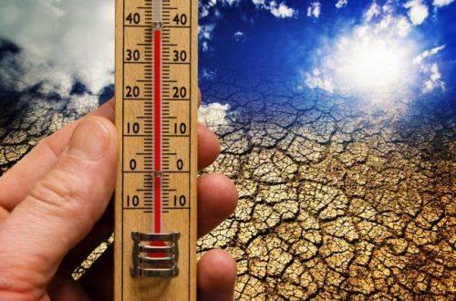 Завтра на Черкащині прогнозують аномальну спеку