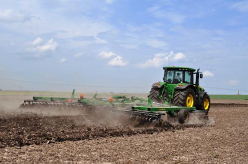 На Черкащині посіяли майже 19 тис. гектарів озимого ріпаку