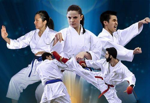 У Каневі відбудеться чемпіонат з годзю-рю карате