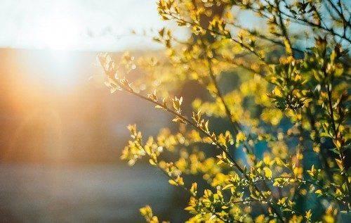 Найближчим часом на Черкащині очікується похолодання