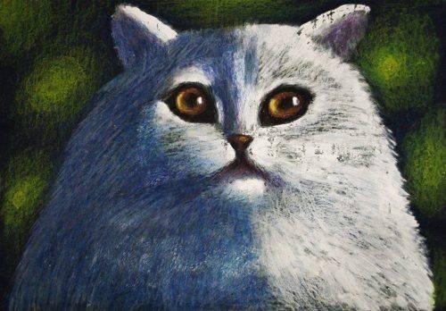 """Черкащан запрошують дізнатися """"Таємницю зниклого кота"""""""