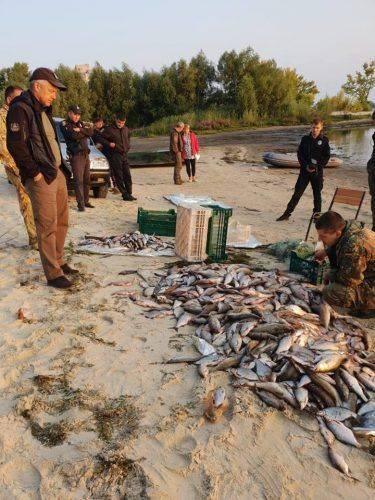 Канівські браконьєри наловили риби на 133 тисячі гривень (фото)