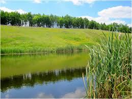 На Черкащині державі повернули землю вартістю майже три мільйони гривень