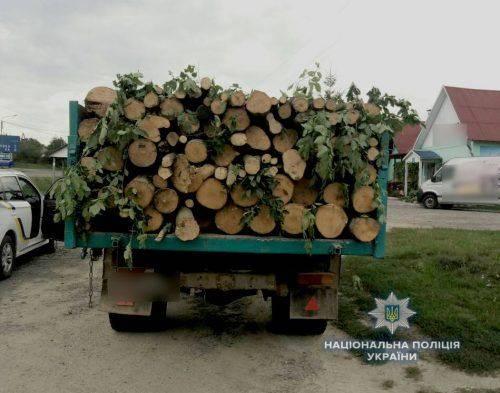На Черкащині затримали водія, який незаконно перевозив чотири кубометри деревини (фото)
