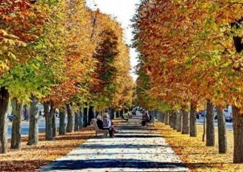 На Черкащині знову потеплішає
