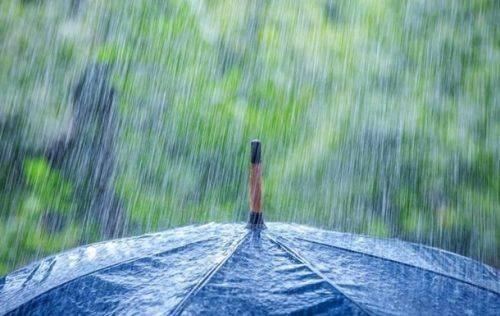 На Черкащині очікуються короткочасні дощі та грози