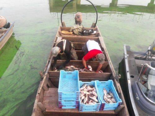 Вилов на понад 110 тис. грн: на Черкащині затримали двох браконьєрів