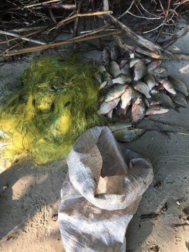За тиждень на Черкащині браконьєри наловили майже 130 кг риби (фото)