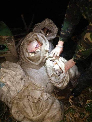 Смілянські браконьєри виловили 75 кг риби (фото)