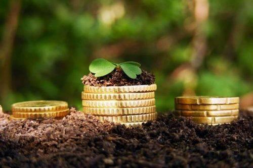 На Черкащині сільська рада незаконно користувалася землею вартістю понад 2,5 млн грн
