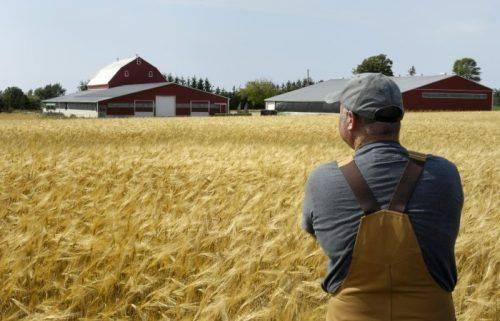 Аграрії Черкащини отримають майже сім мільярдів гривень дотацій