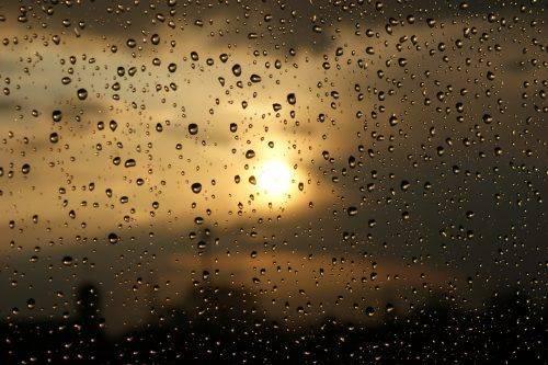 Sinoptik: Погода в Черкасах та Черкаській області на п'ятницю, 7 вересня
