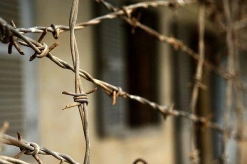 """На Черкащині розслідуватимуть справу """"зараженого м'яса"""" для в'язнів"""