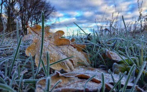 """""""Перший подих зими"""": у Черкаській області очікується похолодання"""