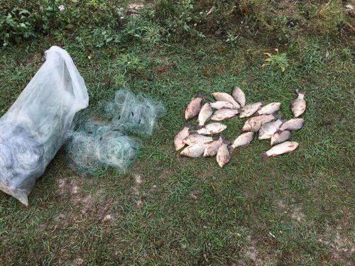 За тиждень на Черкащині браконьєри наловили понад 450 кг риби (фото)