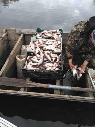 Черкаські браконьєри наловили риби майже на 120 тис. грн (фото)