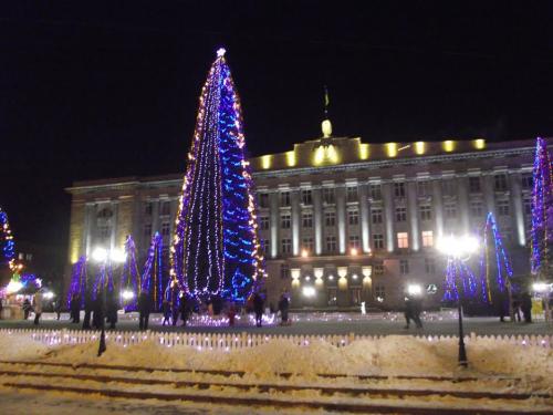 У Черкасах обирають, де встановити головний символ Нового року