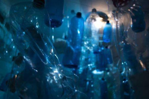 """""""Мандрами океанічного дна"""": у Черкаському художньому музеї відкрилася оригінальна виставка (фото)"""