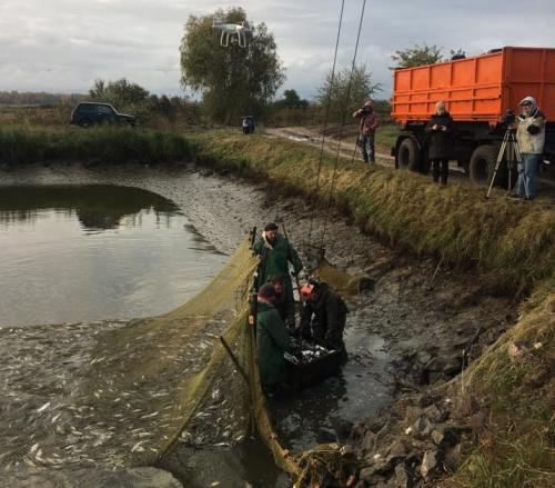 На Черкащині розпочато зариблення Кременчуцького водосховища