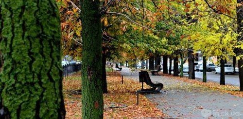 ТОП-5 локацій Черкас для прогулянок восени