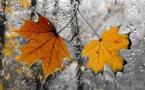 Наприкінці тижня у Черкаській області похолодає