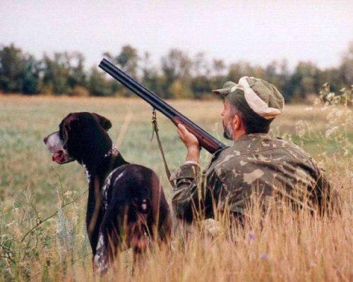 На Черкащині стартує сезон полювання на диких тварин