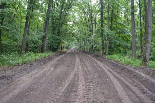 На Черкащині відновили майже 35 км лісових доріг