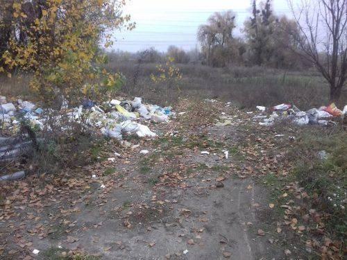 У Каневі невідомі утворили стихійне сміттєзвалище