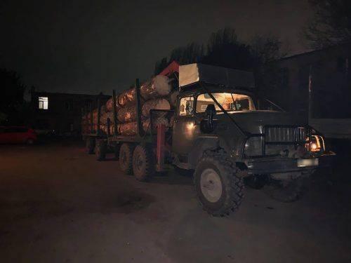 На Черкащині СБУ піймала посадовця-викрадача лісу (фото)