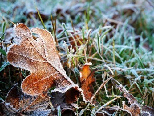 У Черкаській області очікується похолодання