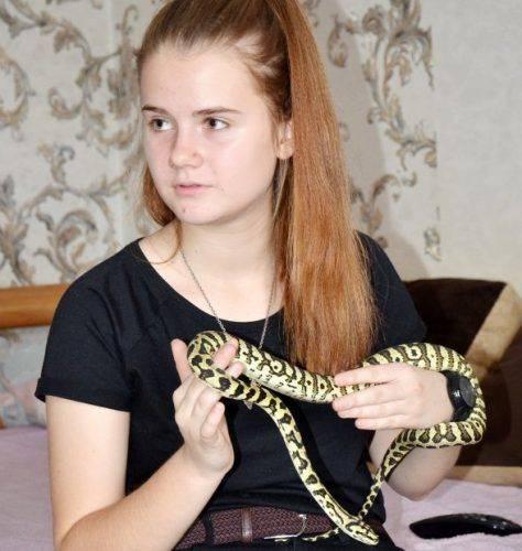 Пітон, гекони та павуки-птахоїди: черкаська школярка показала свій тераріум