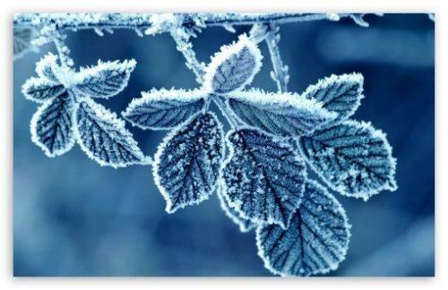 До кінця тижня на Черкащині переважатиме морозна погода