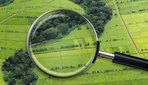 На Черкащині нараховано понад 220 тис. грн шкоди за порушення земельного законодавства