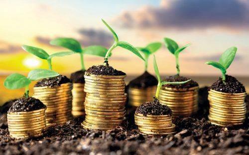 Скільки в середньому коштує оренда землі на Черкащині