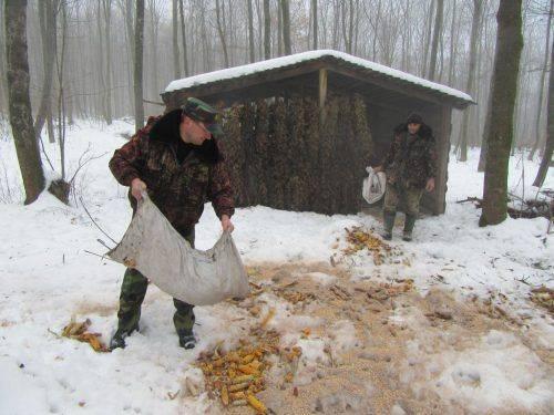 Лісівники Черкащини розпочали сезон зимової підгодівлі диких тварин