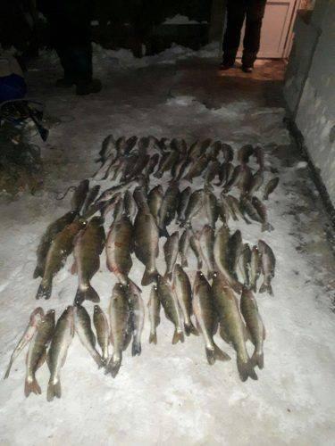 На Черкащині браконьєри виловили риби на понад 70 тисяч гривень