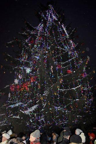 В Умані урочисто відкрили новорічну ялинку (фото)