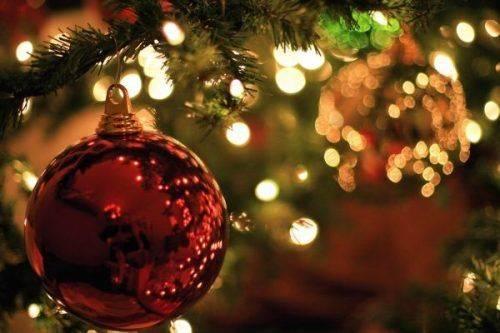 У Черкасах почали встановлювати новорічну ялинку (відео)