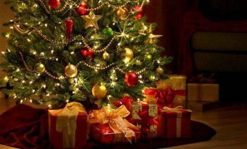 Черкаські надзвичайники розповіли, як правильно обирати та прикрашати новорічну ялинку (відео)