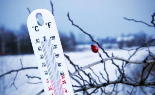 На Черкащині очікується найхолодніша ніч