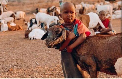 Африка просто фантастична, - Олександр Скічко розповів про враження від відпочинку (фото)