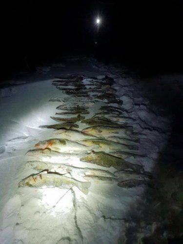 На Черкащині затримали рибалок, які наловили риби на понад 34 тис. грн
