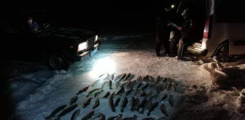 З початку року на Черкащині браконьєри наловили риби на понад 218 тис. грн