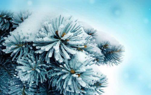 Найближчим часом на Черкащині збережуться морози