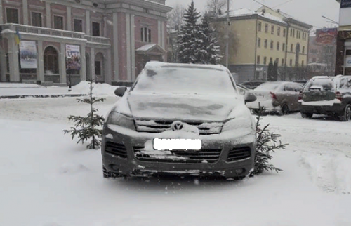 Черкаський горе-водій припаркувався на молодій ялинці (фотофакт)