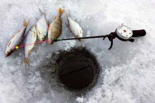 На Черкащині рибалка заблукав серед островів